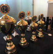 Spielefest von Amigo Spiele am 14. + 15.09.2019